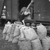 Aardappelverlading op Station Hoensbroek