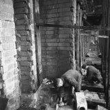 Vernieuwde cokesovens op de Cokesfabriek Maurits