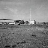 Landschap met in de verte de Ammoniakfabriek en de ACN fabriek