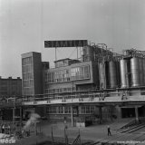 Stamylanfabriek op het Polychemybedrijf