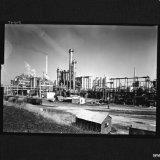Fabrieken voor Organische producten: Caprolactamfabriek en Hydranonfabriek. Op de achtergrond vlnr schoorsteen Salpeterzuurfabrieken, drie priltorens, Nitraatfabriek 1 en schoorsteen WKC