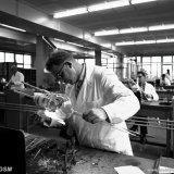 Glasblazers in het gebouw Technische Diensten op het Centraal Laboratorium