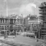 Overzicht lokatie Noord met Ammoniak-, Caprolactam- en Oxanonfabriek