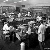 Algemene Analyse (Anorganische Groep) op het Centraal Laboratorium