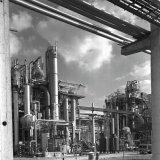 Lysinefabriek