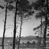 Gezicht op de Staatsmijn Maurits vanaf het Danikerbos in Geleen