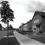 Eigenbouw woningen van personeel van de Staatsmijnen in de Frans Erenslaan in Geleen