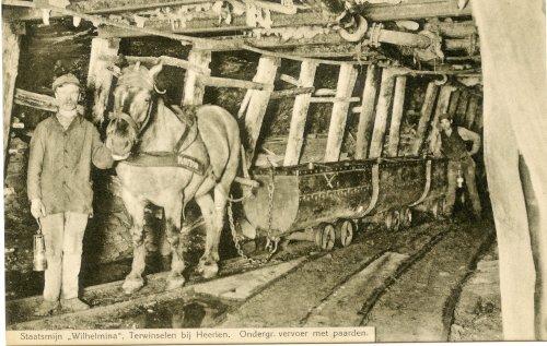 De Nederlandse Mijnspoorwegen I: het ondergrondse spoorbedrijf
