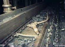 Duitse invloed in de mijnbouw